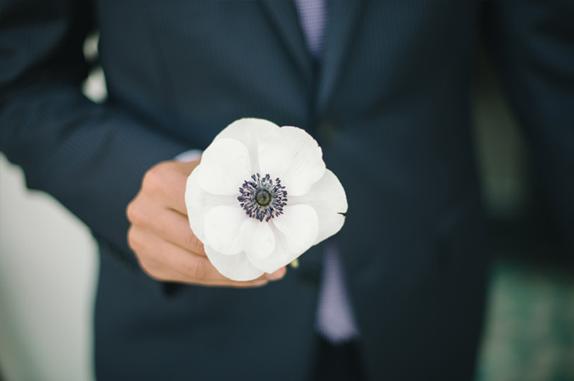 anemone flower | via vmac+cheese