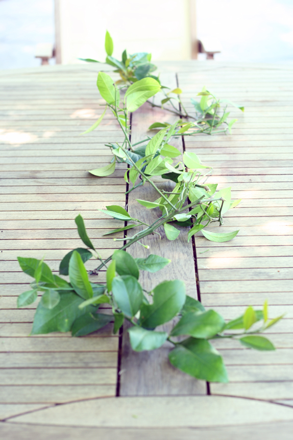 lemon leaves as a table centerpiece