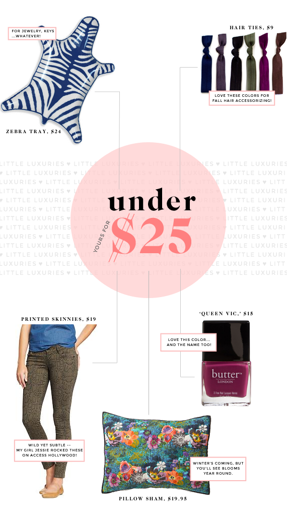 little luxuries for $25 and under