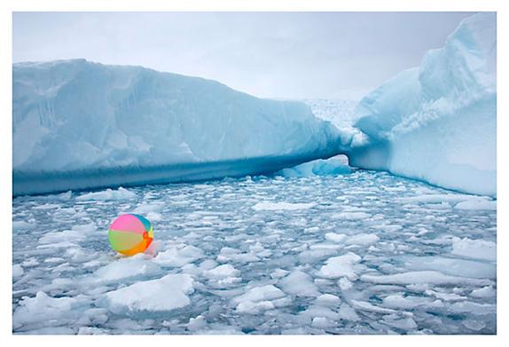 antarctica gray malin