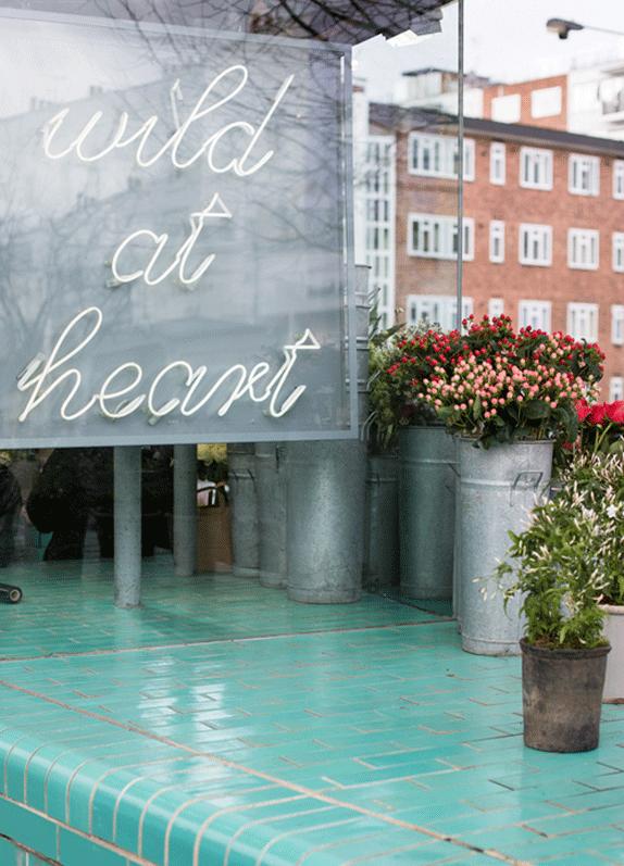 wild-at-heart-london
