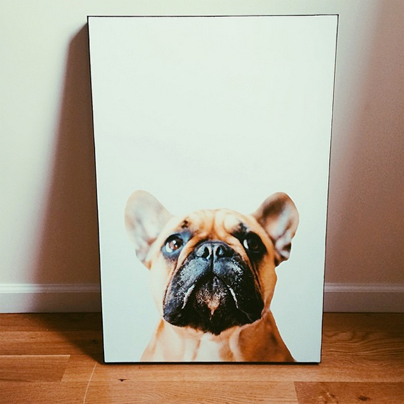 lucy - art.com canvas prints