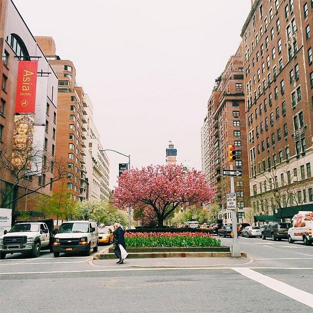 park avenue nyc by victoria mcginley