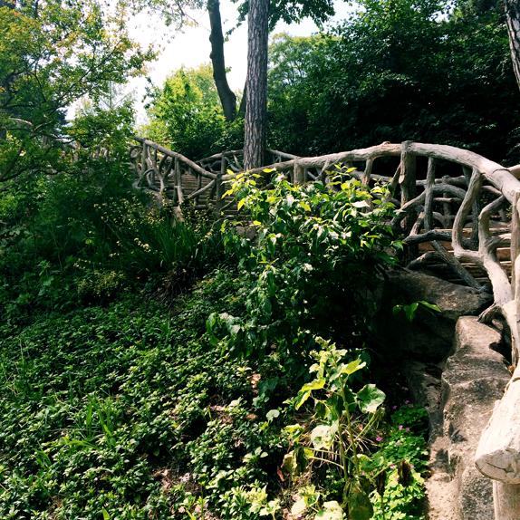 bridge in parc montsouris