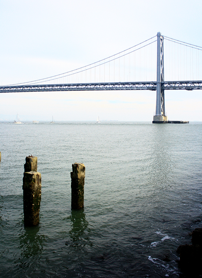 san francisco bay bridge - photo by victoria mcginley