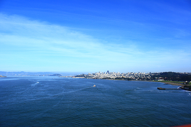 view of san francisco - photo by victoria mcginley