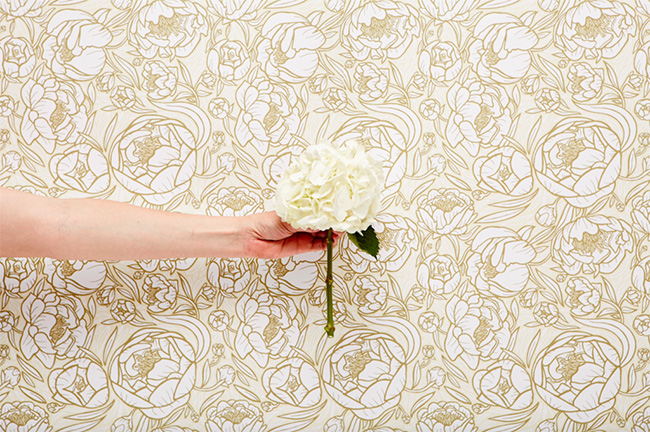 chasing paper - peonies pattern - removable wallpaper