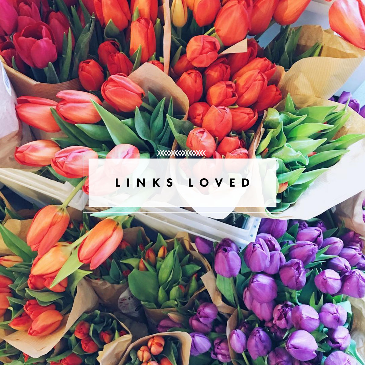 links loved - victoria mcginley studio