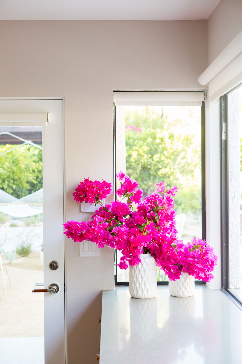 A House in the Hills Kitchen with bougainvillea