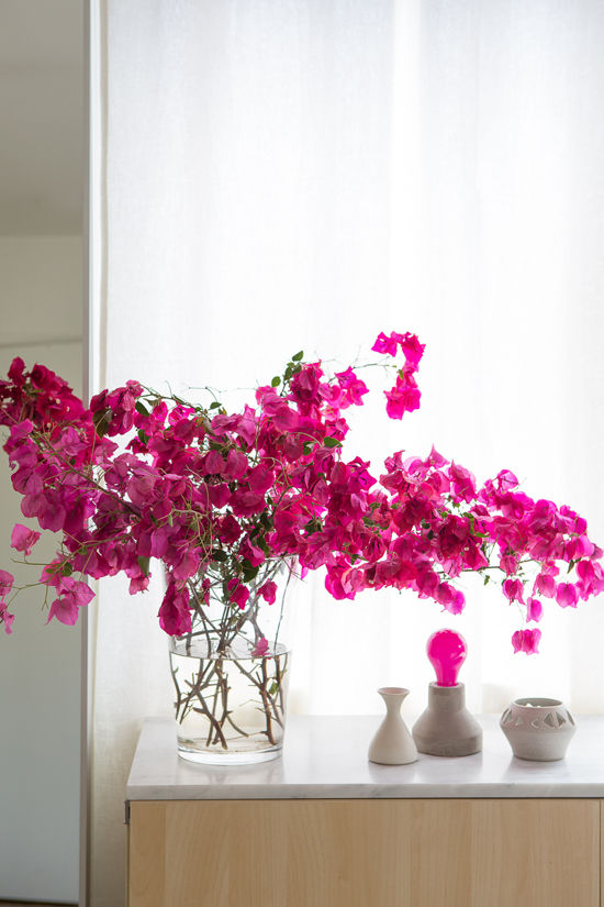 Design Love Fest bougainvillea in vase | photo by laure joliet with styling by sfgirlbybay and designlovefest