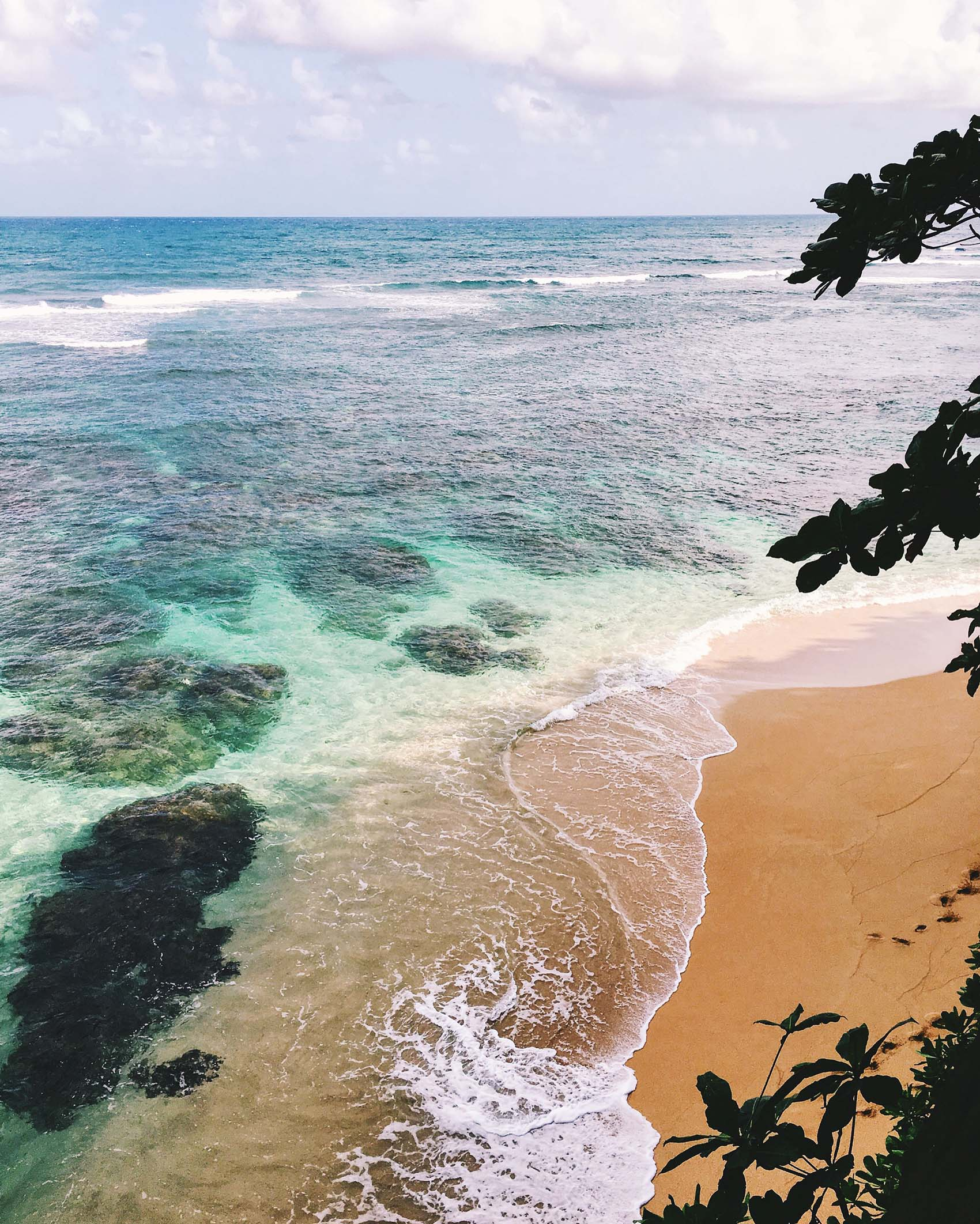 Kauai Beaches: Victoria McGinley Studio