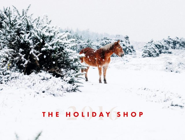 Introducing…The 2016 Holiday Shop