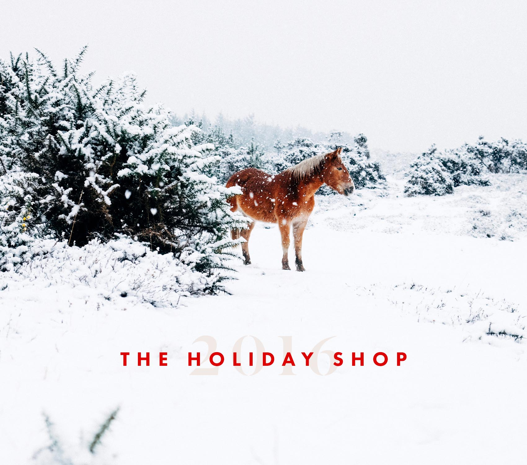 the-holiday-shop-by-victoria-mcginley-studio