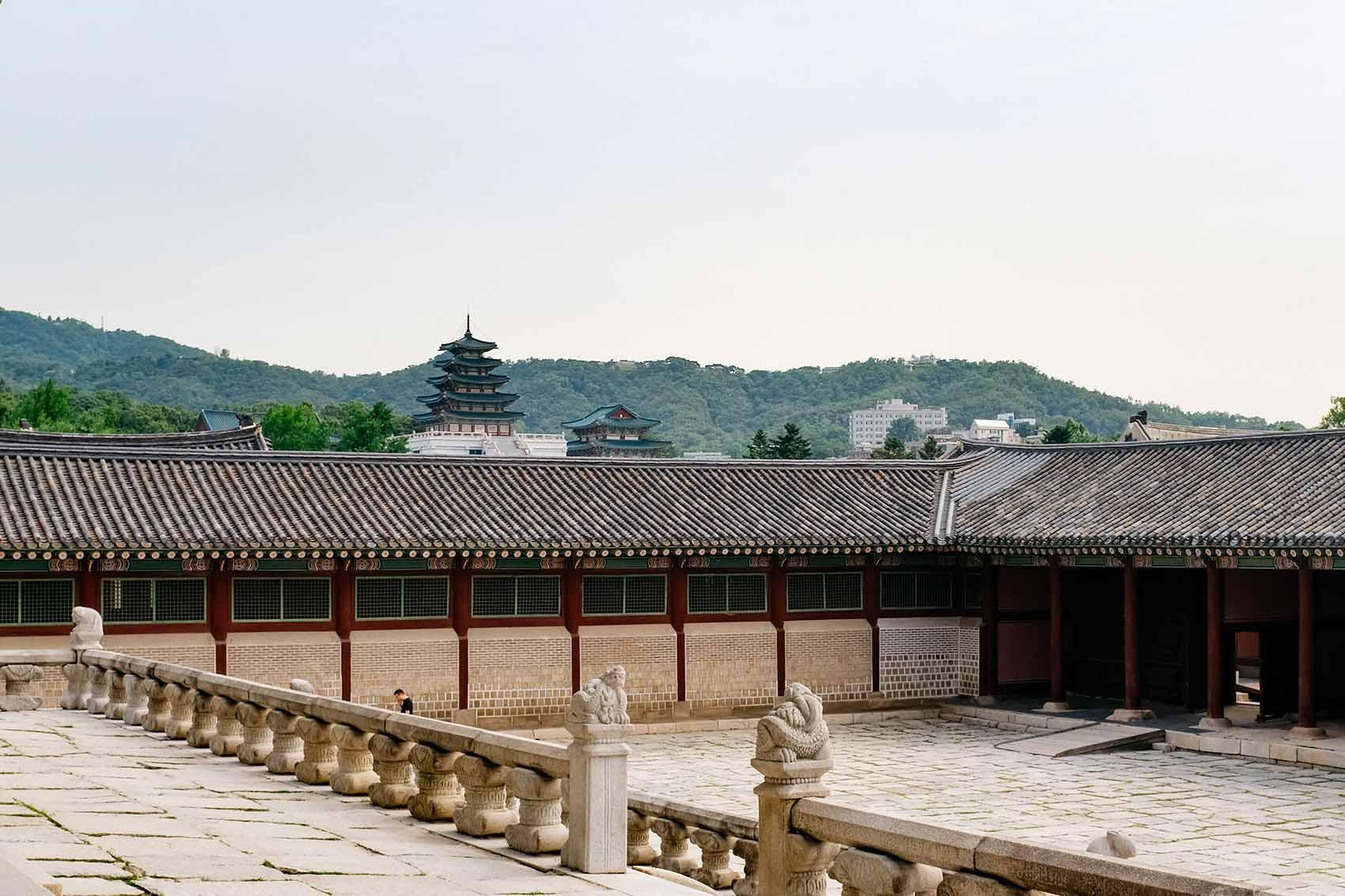victoria mcginley - adoptee trip to korea mosaic tour