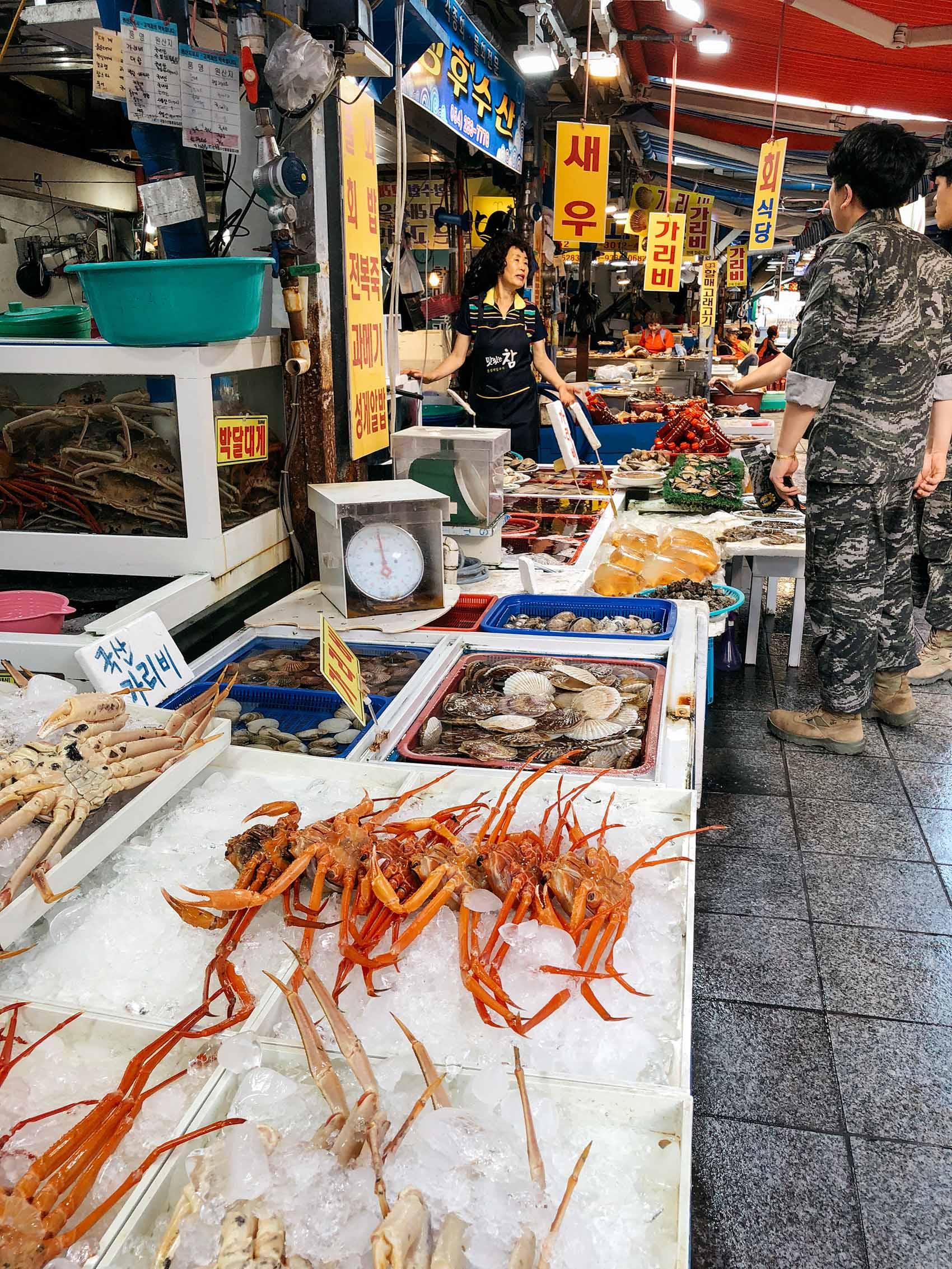jukdo fish market, pohang